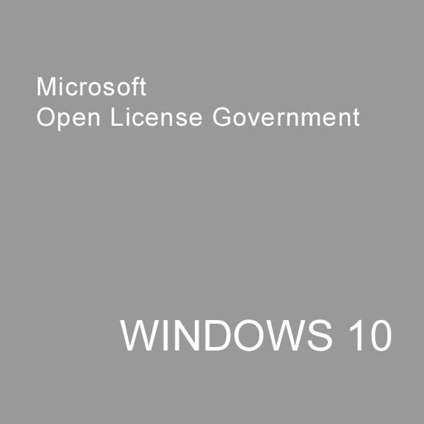 MS Open-GOV Win Enterprise Upg inkl.SA